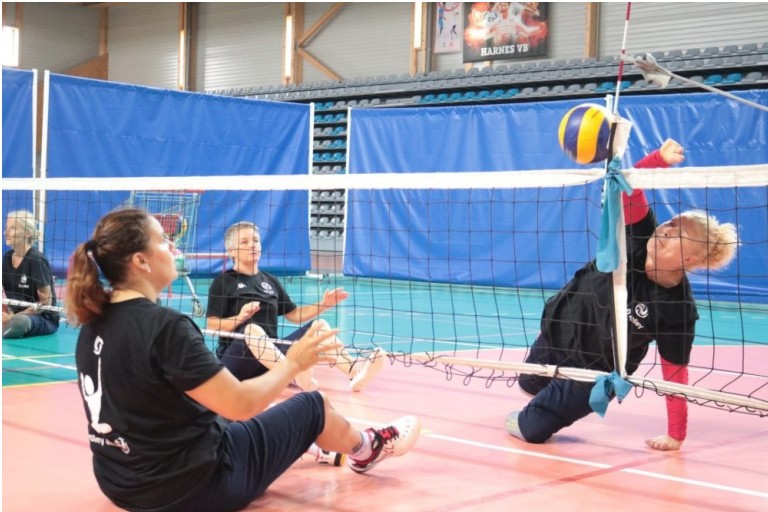 Volley assis