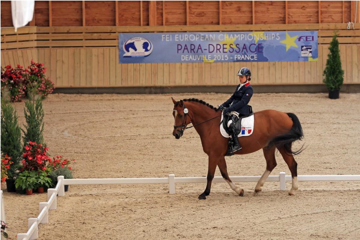 Equitation - Handisport